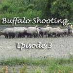 Buffalo-Shooting-Ep-3