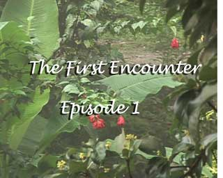 The First Encounter - Episode 1