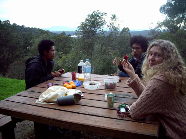 picnic-dandenongsweb.jpg