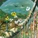 east-timor-island