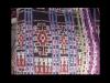 orlandas-purple-close.jpg