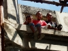 three-boys-canossa-marga